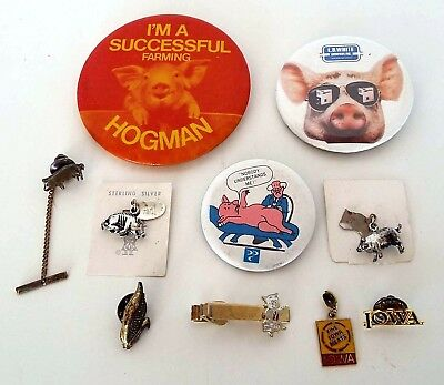 10 Pc Lot Iowa Pig Pork Corn Advertising Buttons Sterling Charms Tie Tack Clip