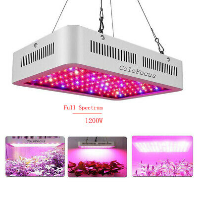 ColoFocus 600W LED Grow Light Full Spectrum LED Panel Lamp for Hydroponic Plant