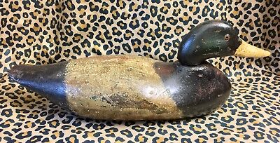 Antique Duck Decoy 1890's Carved Wood 19th Century Glass Eyes