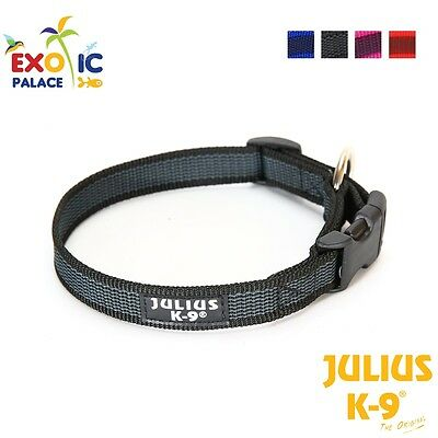Julius-K9 Color & Gray Collare In Nylon Resistente Per Cane Con Sgancio Rapido