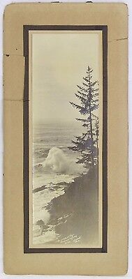 "Andrew Harwood Photograph ""Ocean at Play, Roosevelt Highway"" Gelatin Silver 11x5"
