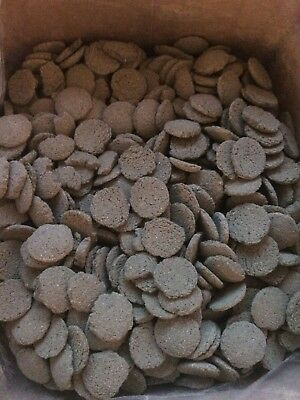 50 grams Plecotomus Wafers Spirulina Algae Wafers Catfish Pleco  Fish Food