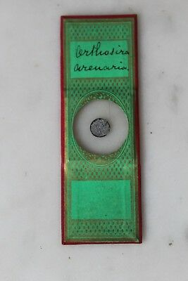"FINE ANTIQUE VICTORIAN MICROSCOPE SLIDE GEOLOGICAL BY ""Greenpapaers"""