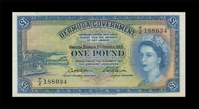 1966 British Colony Bermuda 1 Pound Qeii **rare** (( Ef ))