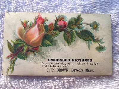 Antique Victorian Trade Card Embossed Pictures G. P. Brown Beverly Massachusetts