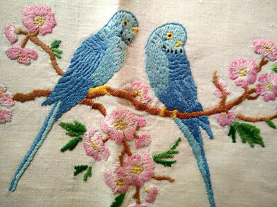 RARE Budgies/Budgerigars & Cherry Blossoms ~Hand Embroidered Tea Cosy/Cover
