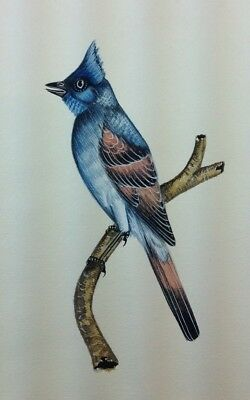 """10"""" x 7"""" Antique Bird Scene Matted Painting Old Leaf Paper 561"""