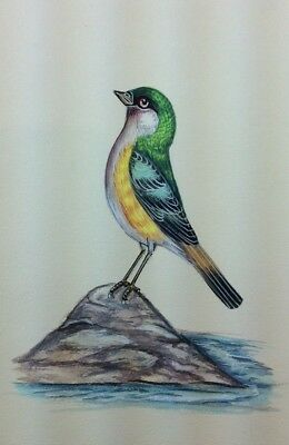 """10"""" x 7"""" Vintage Bird Scene Matted Painting Old Leaf Paper 562"""