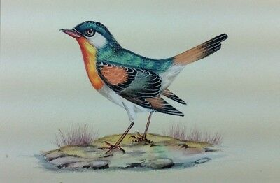 """7"""" x 10"""" Antique Bird Scene Matted Painting Old Leaf Paper 563"""