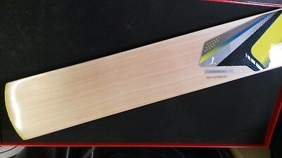 PUMA PULSE 5000 English Willow Cricket Bat - new, never used