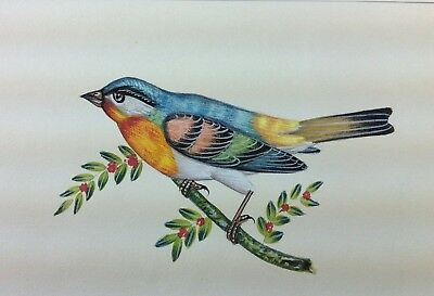 """7"""" x 10"""" Vintage Bird Scene Matted Painting Old Leaf Paper 564"""
