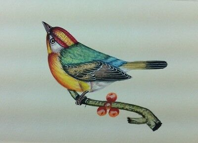 """7"""" x 10"""" Antique Bird Scene Matted Painting Old Leaf Paper 565"""