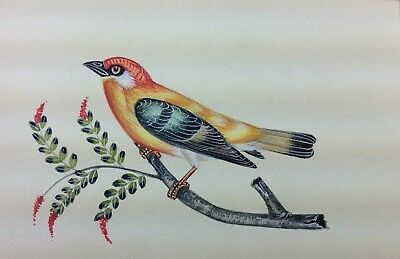"""7"""" x 10"""" Vintage Bird Scene Matted Painting Old Leaf Paper 566"""