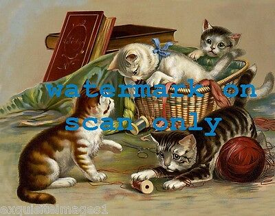 1898 Art~Kitten~Kittens~Cat~Cats Play in Sewing Basket~NEW Large Note Cards