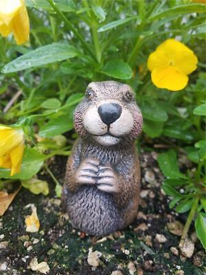 Gopher Ceramic Hand Painted For Garden, Patio Pots Or Inside Your Home