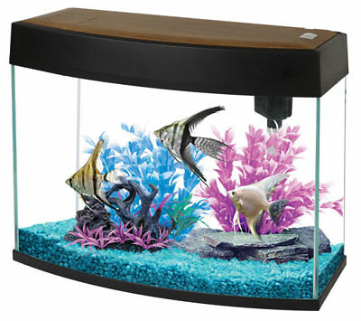 Fish R Fun FRF-440 Panoramic 20 Litre Aquarium Fish Tank Tropical Coldwater