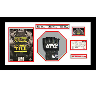 1x Signed UFC or MMA Glove Mitts in Octagon 3D Design Box Frame - White Mount