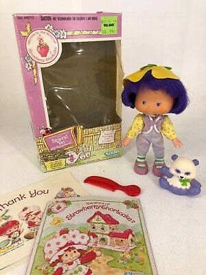 Vintage 1980s Strawberry Shortcake - Almond Tea with Marza Panda