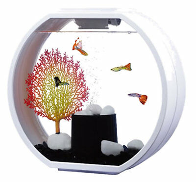 Fish R Fun Round Deco O Fish Tank White or Black 10L Mini Tropical Aquarium