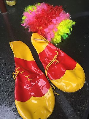 Clown Feet And Wig(Costume)