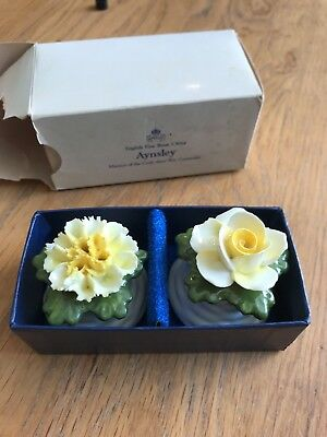 Vintage Aynsley Yellow Flower Salt And Pepper Pots