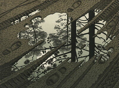 M.C. Escher Puddle Giclee Canvas Print Paintings Poster Reproduction