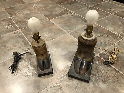 Set of Vintage Taxidermy Paw Lamp Hoof lamps, Cow? Not Working!!