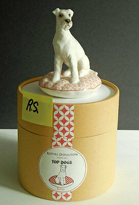 Royal Doulton Top Dogs BOBO TERRIER  BRAND NEW IN CANNISTER   701587255486