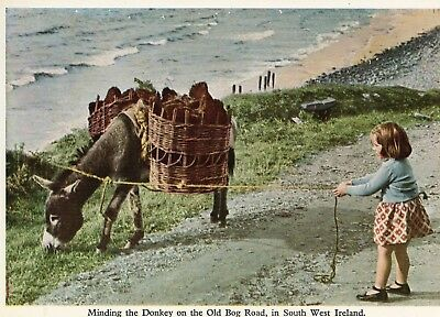 Minding The Donkey On The Old Bog Road In South West Ireland Mac Series Postcard
