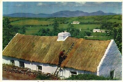 THE THATCHER AT WORK IN THE IRISH COUNTRYSIDE IRELAND CARDALL POSTCARD No. 408