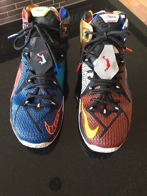 info for fac02 f20f4 Nike Lebron 12 SE What The Lebron Size 10