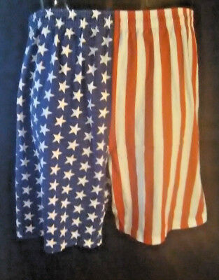 Vintage American Flag Shorts L.A. sportswear 90s 4th of July made in U.S.A.