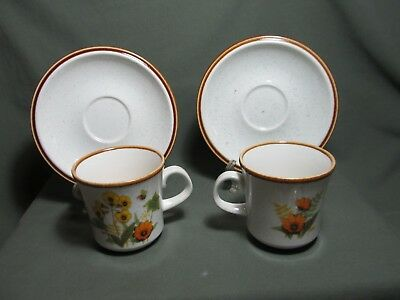 Mikasa Fresh from the Garden Set of 2 (two) Cup and Saucer Sets