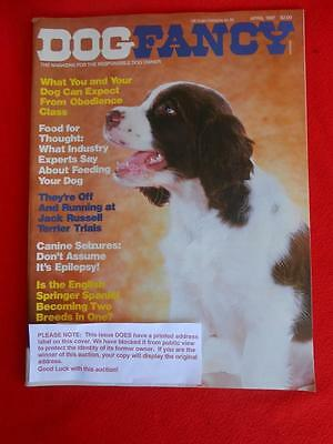 RARE Collectible ENGLISH SPRINGER SPANIEL Issue~ DOG FANCY Magazine ~ April 1987