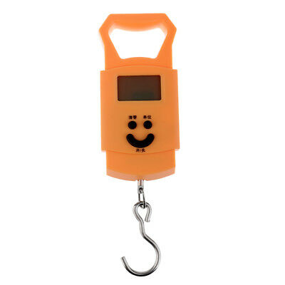 50kg/10g Pocket Backlight Digital Fishing Hanging Luggage Weight Hook Scale