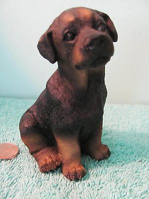 Dog Statue Resin Figurine, Young Rottweiler, Black w Brown Highlights, Sitting