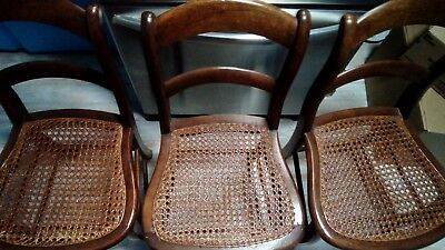 Antique Cane Seat Chairs Set of 3