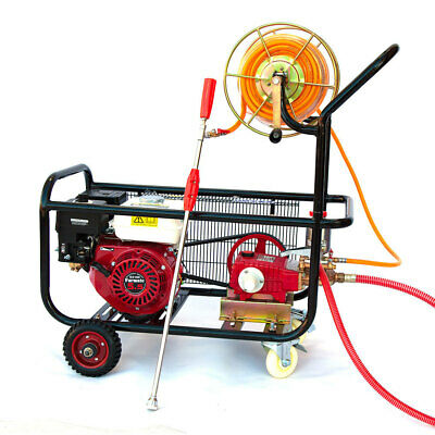 5.5HP Weed Pest Control Spraying System with Piston Pump 50m Sprayer Hose Reel