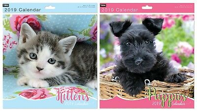 2019 Kittens and Puppies Square Wall Calendar Month to View Planner Home/Office