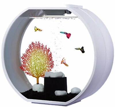Fish R Fun Round Deco O Designer Aquarium Fish Tank White or Black 20 Litre