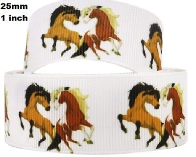 1 metre, HORSE RIBBON,  25 mm, Grosgrain, 1 inch, Stallions, Hair, Free Aus Post