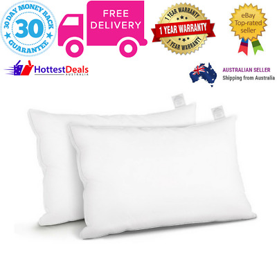Giselle Bedding Duck Feather Down Twin Pack Pillow Cotton Cover Hotel Home Bed