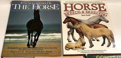 Lot of Two Large Hard cover Horses Equine Photography Art Coffee Table Books
