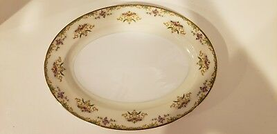 Vintage Noritake Gloria China 16 Inch Oval Serving Platter (x1)