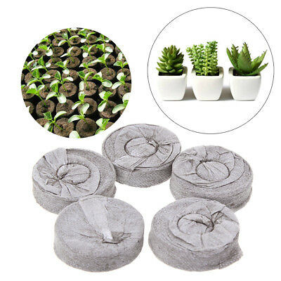 5/10Pcs Jiffy Peat Pellets Seed Starting Plugs Pallet Seedling Soil Blocks