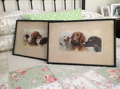 Antique Dog pictures,fox terrier,setter,Labrador,ready to hang,country house.