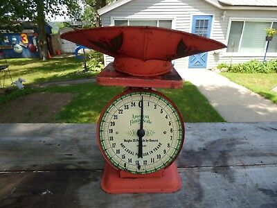 Vtg AMERICAN FAMILY Kitchen Produce SCALE 1906 Model w/ Scoop Porcelain Dial