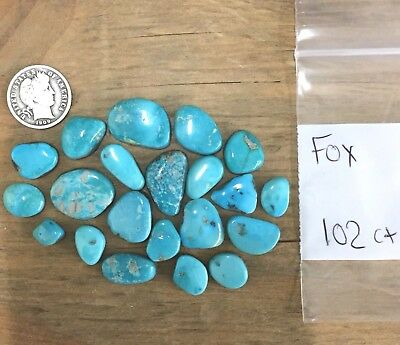 100 +  / - CTS. TURQUOISE CABOCHONS! Fox Mine - Nevada