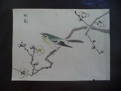 Birds and Flowers #6 -SEIHO Warbler - Antique Japanese Woodblock Print Art