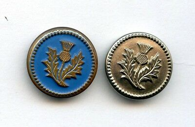 2 METAL buttons--BOTH w/ MOLDED SCOTTISH THISTLE-1 PAINTED BLUE--1 WHT METAL 7/8
